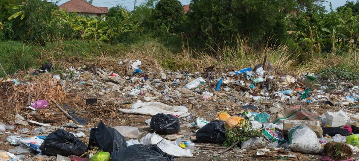 How the science of biodegradability can help take a big step towards a cleaner India