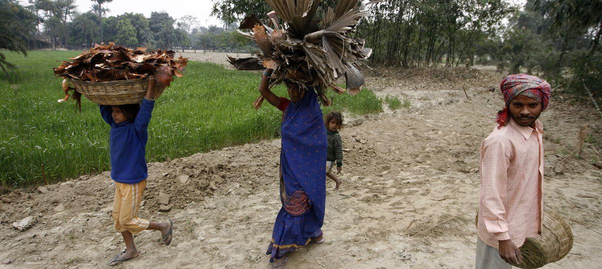 As MNREGA work dries up, even the elderly in Bihar are migrating to brick-kilns