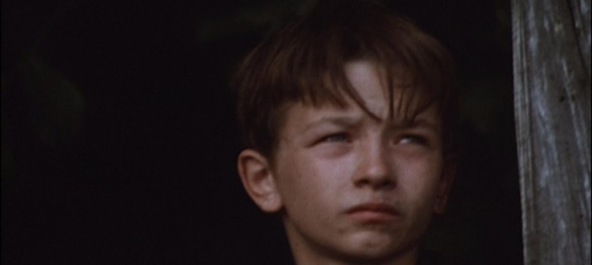 Five-star cinema: Ken Loach's 'Kes'