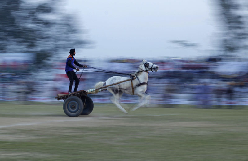 A competitor in the horse cart race.