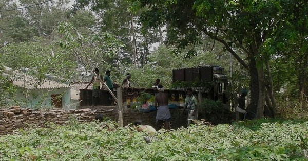 Adivasis in the Bastar conflict zone are spearheading a massive conservation effort