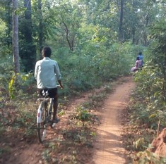 Why some Chhattisgarh villagers don't want the government to build roads in their areas