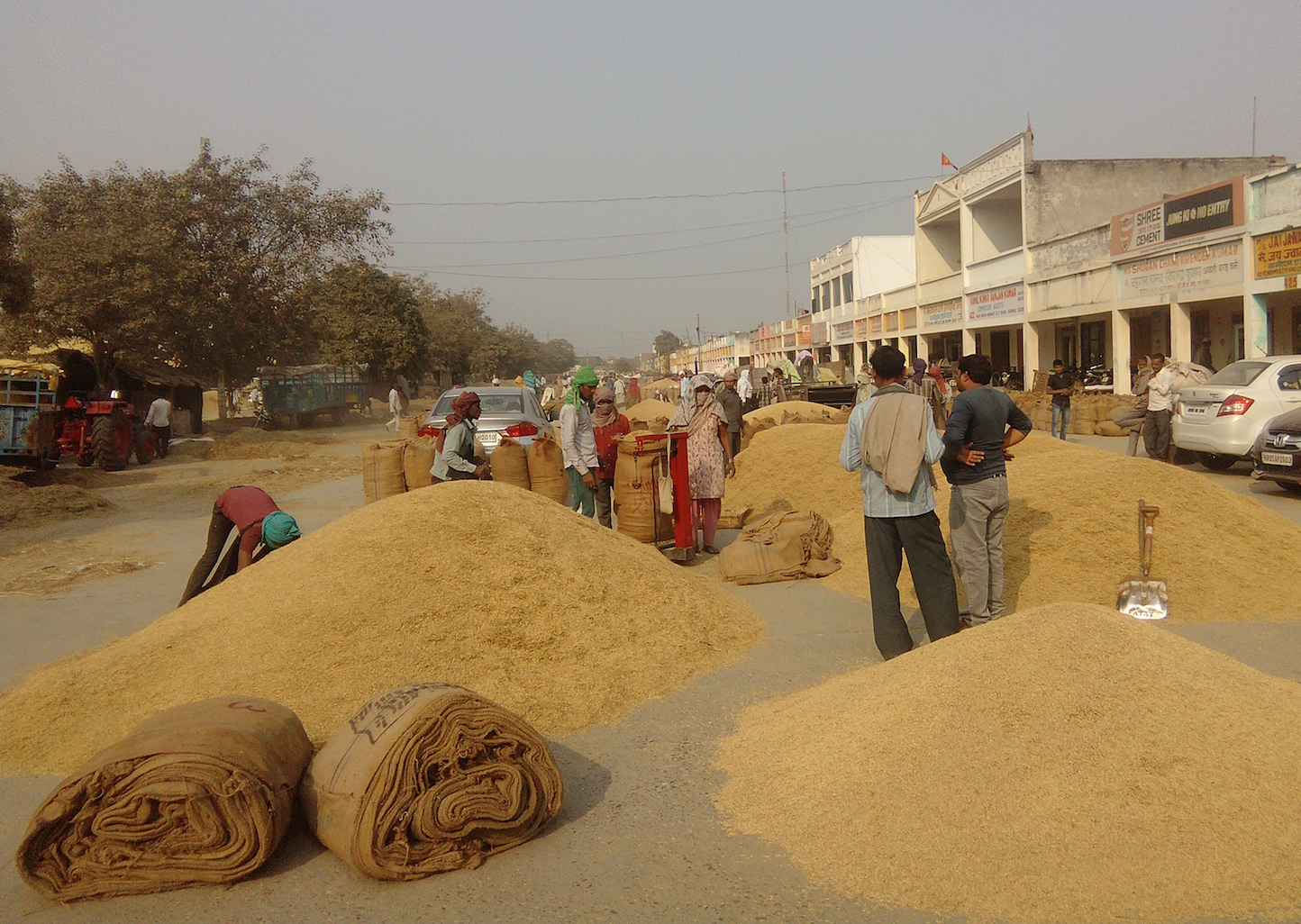 Grains waiting to be sold in Karnal mandi.