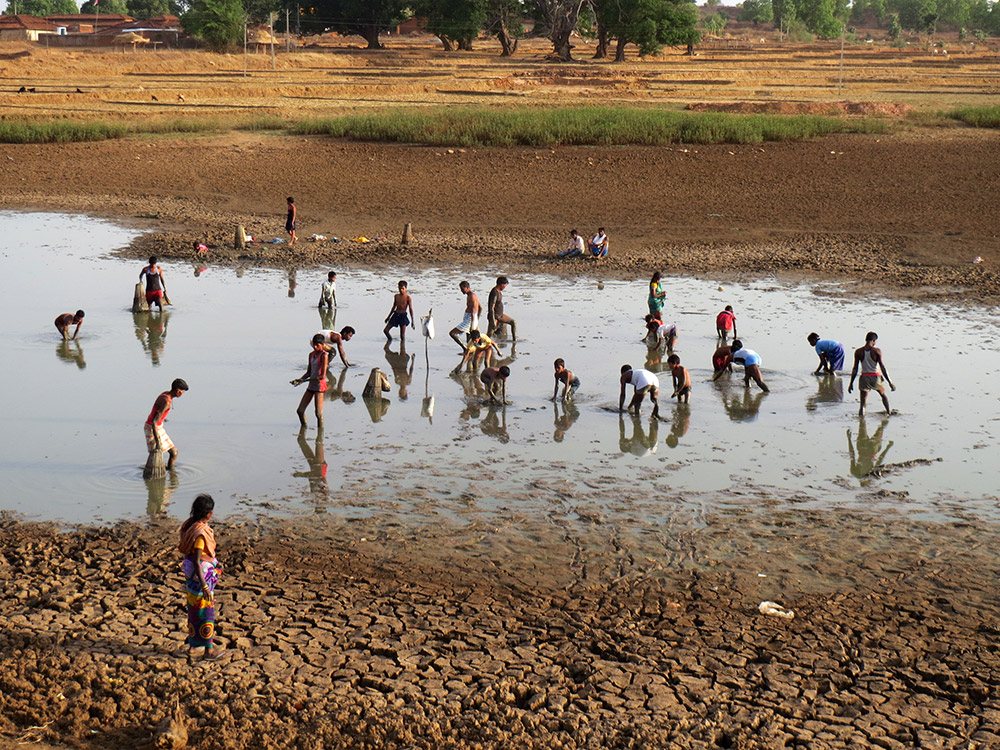 Villagers fish in the only pond left with water in Amwatoli in Balumath, Latehar. Weak cattle get stuck in the wet mud if they try to enter the pond.