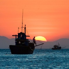 China swims into foreign waters to catch fish as own stocks collapse, fuelling maritime disputes