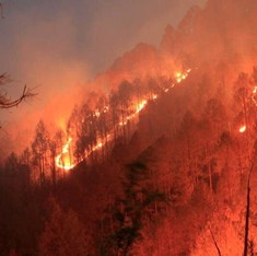 The Uttarakhand forests weren't always burning – this is how we started the fires
