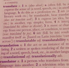 Word for word: the translator's temptations and the pleasure of sinning