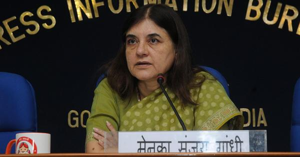 Maneka Gandhi's suggestion on mandatory sex tests aims to absolve doctors of blame for foeticide