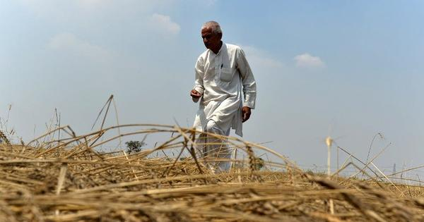 Everybody has announced relief for Rajasthan farmers – but why aren't they seeing the money?