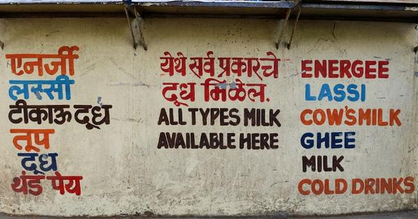 Who drinks more milk, Punjabis or Haryanvis?