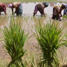 Kerala's new gambit: state will pay interest on farmers' loans