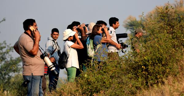 World's largest bird count begins this week, but won't do much for conservation in India