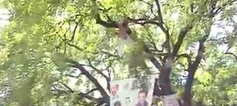 Blame game over a farmer's suicide at AAP rally: is there any level our politicians won't stoop to?