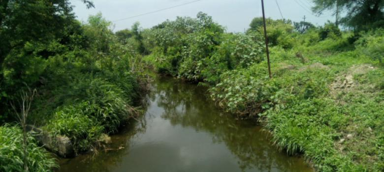 In Marathwada, villages are trying to recharge their groundwater supplies by denying water to others