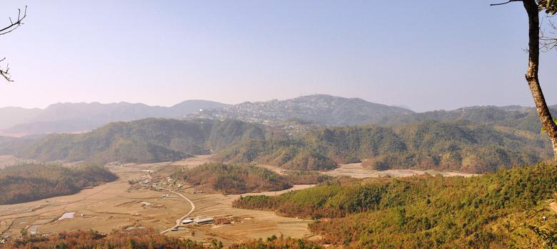 Mizoram announces an oil palm district – but this might be a bad idea