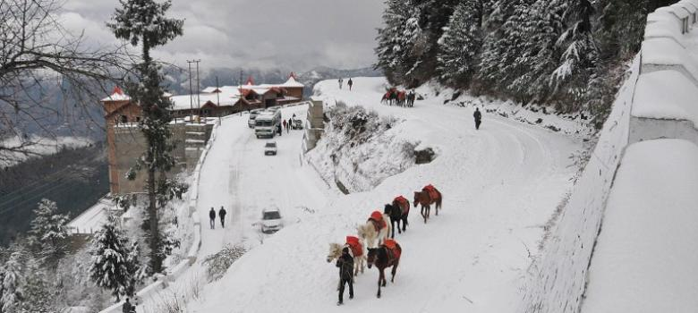 Photos: Snowfall dusts many parts of Northern India