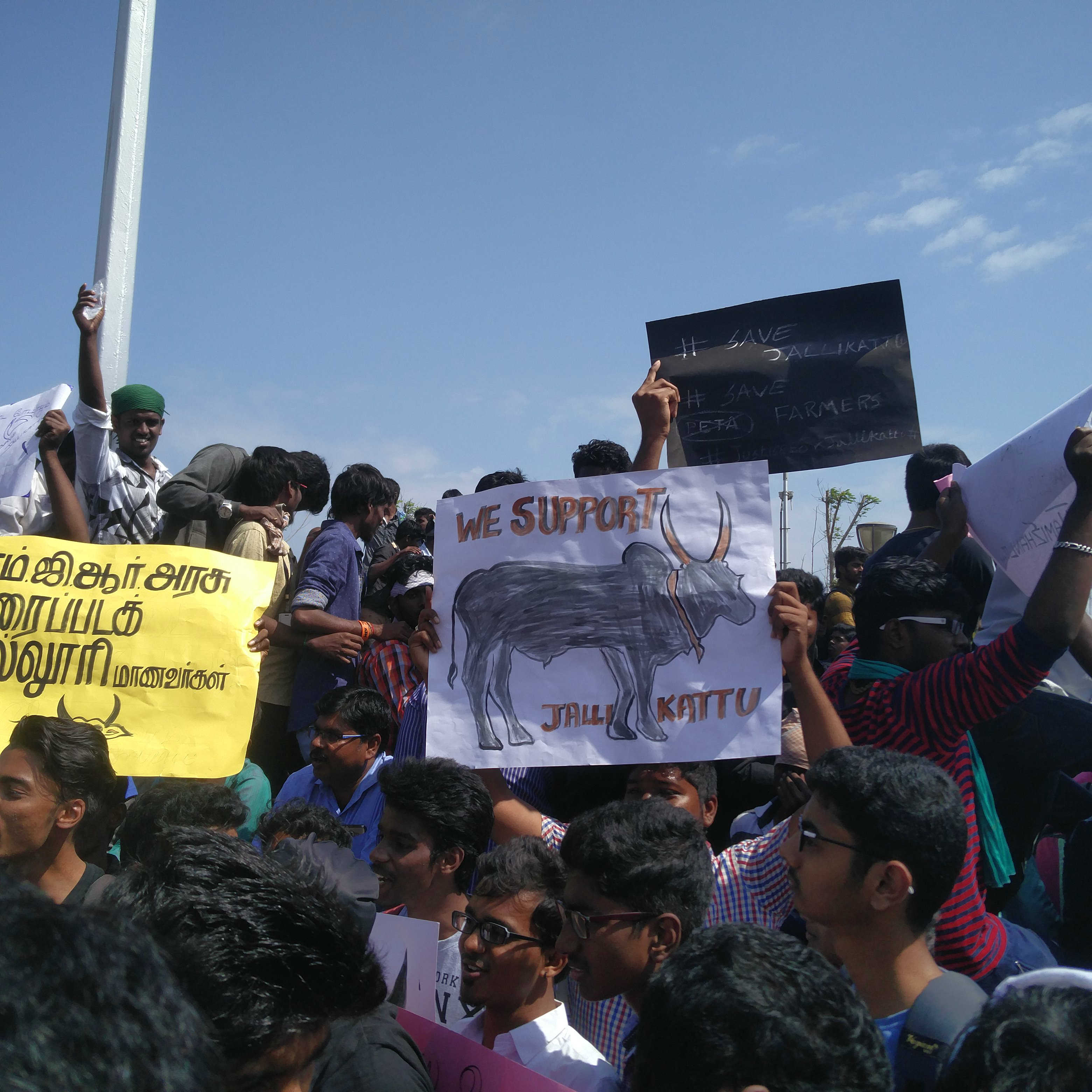College students gathered at the protest.