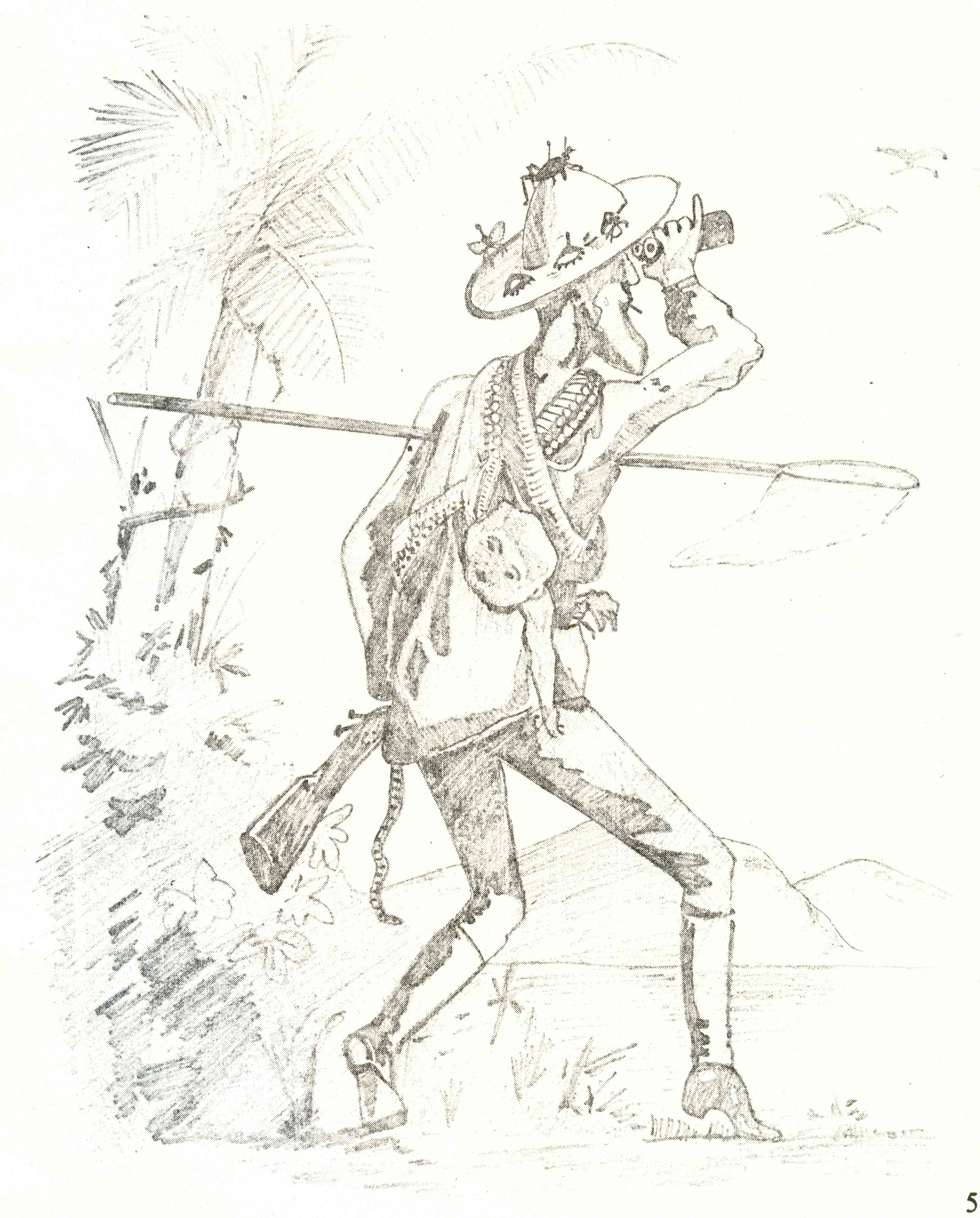 EH Aitkens represented an image of the typical British naturalist, made famous in a sketch by Sterndale: a Jack Sprat figure wearing a hat, a butterfly net and binoculars in hand, and possibly a tiffin in the backpack. (Source: Bombay Natural History Society)