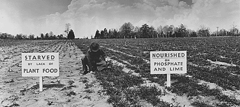 How the great phosphorus shortage could leave us short of food