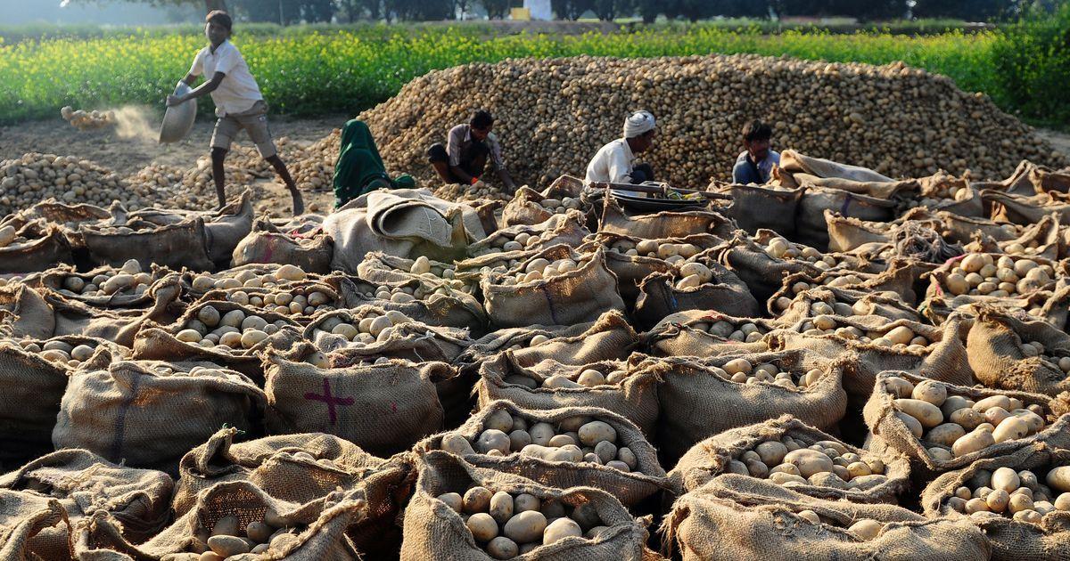 आलू की कीमत में भारी कमी से किसानों की मुश्किलें बढ़ने सहित आज के अखबारों की प्रमुख सुर्खियां