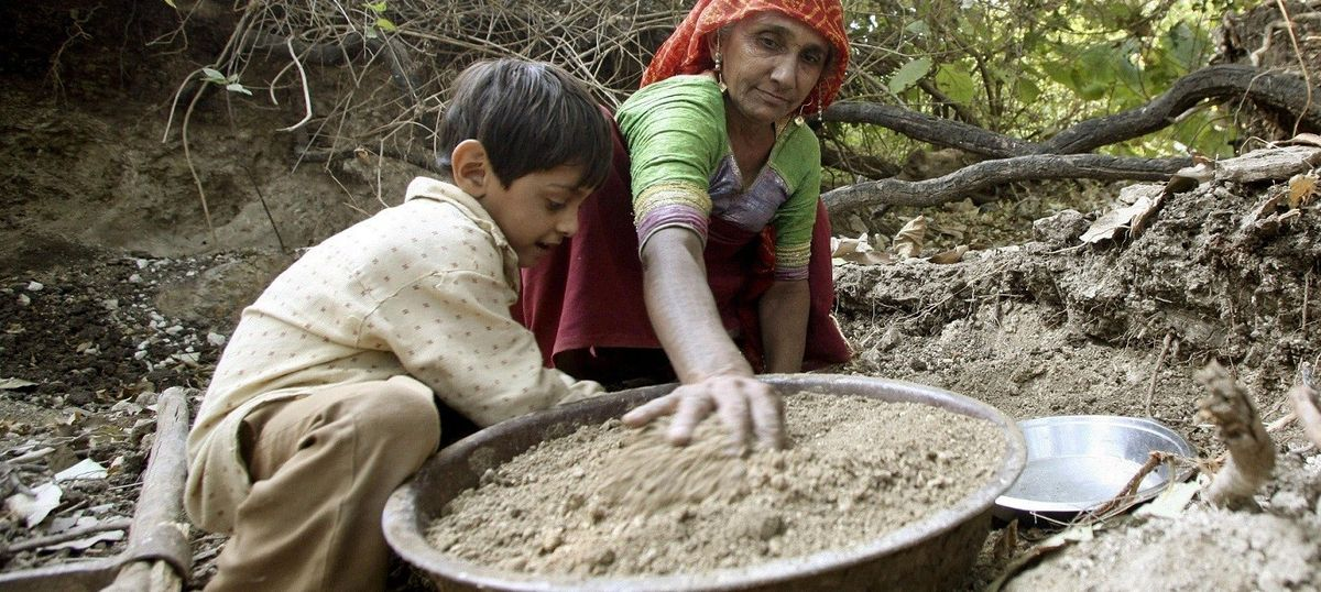 Understanding the Compensatory Afforestation Fund Bill and why it spells doom for adivasi rights