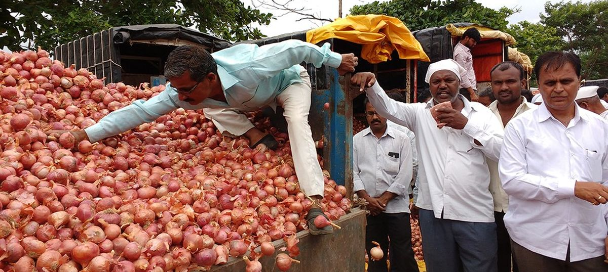 Maharashtra's agri markets are returning to cash – even though they're still reeling from note ban