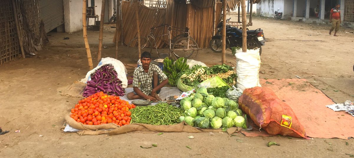 Cauliflower sells for Rs one a kilo in one Bihar market as demonetisation depresses demand
