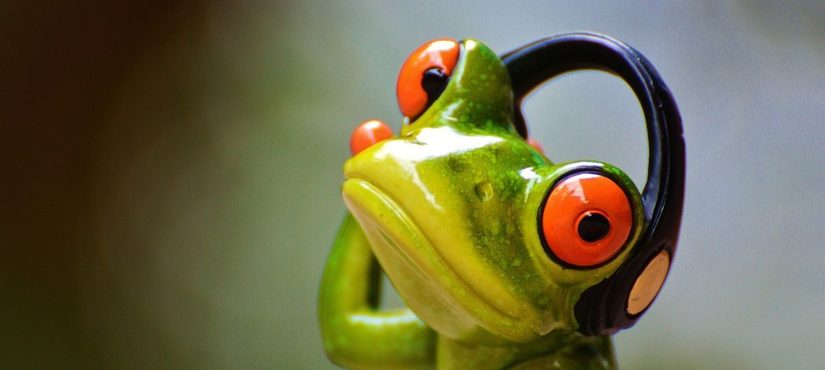 There a croak, hear a croak: How scientists found a way to listen to elusive, threatened frogs
