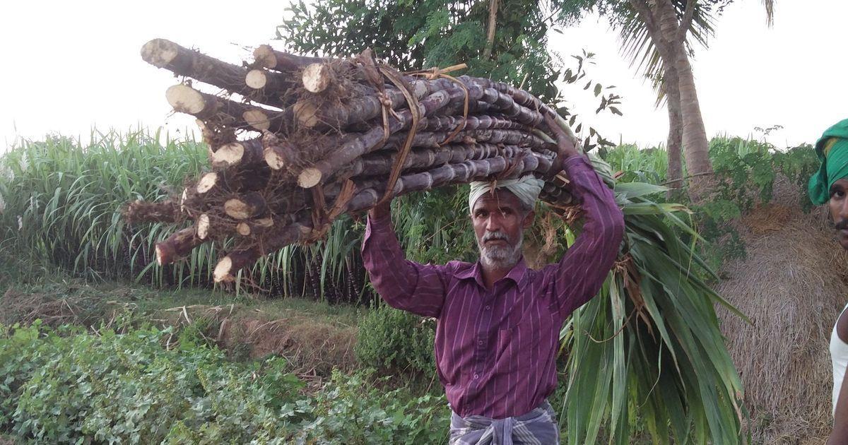 कर्नाटक : बीते पांच साल में साढ़े तीन हजार से भी ज्यादा किसानों ने खुदकुशी की