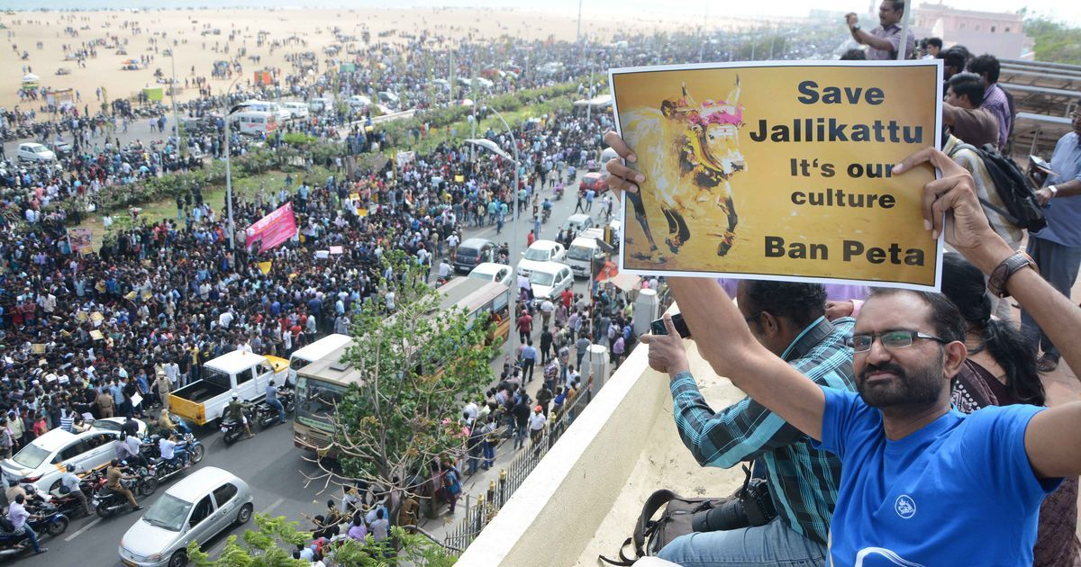 Image result for jallikattu protest images