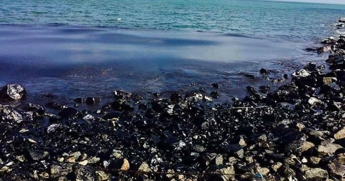 Image result for oil spill in marina beach