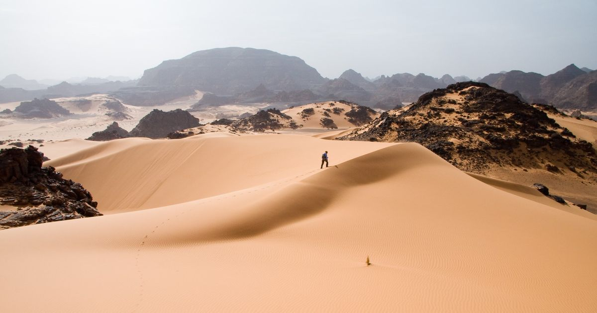 The Sahara was once green and full of life, till humans turned it into barren desert