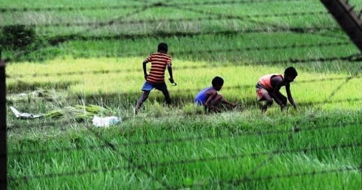 Petition in Supreme Court challenges Assam Accord for