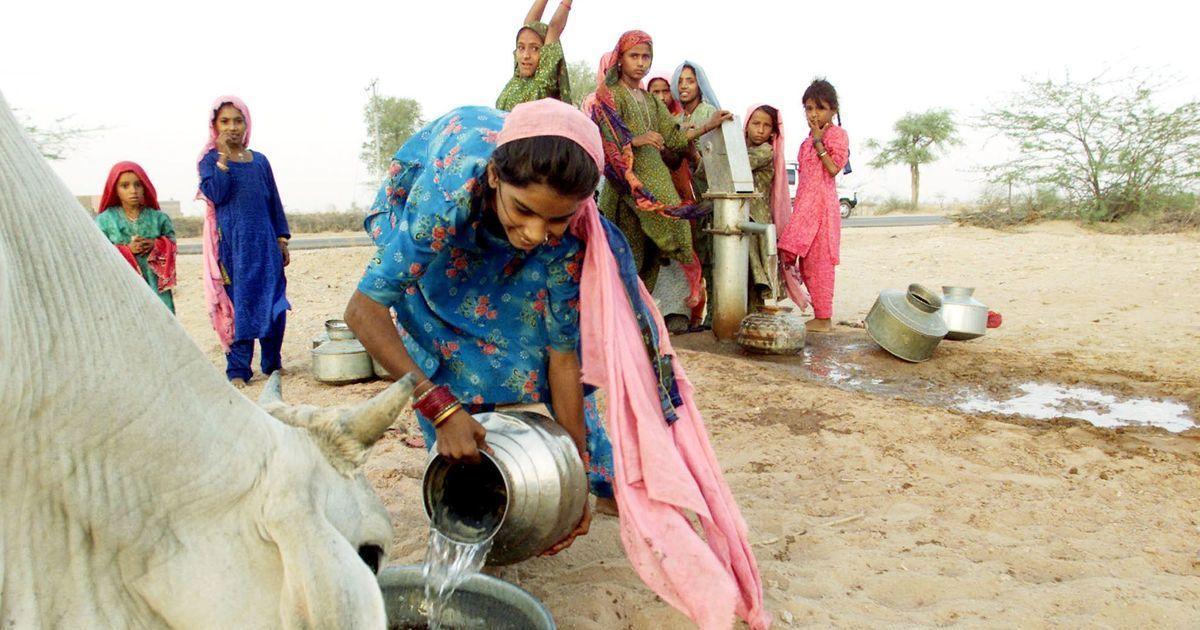 मध्य प्रदेश में ज्यादा दूध देने वाली गाय अब अपने मालिक को दो लाख रुपए का इनाम भी दिला सकती है