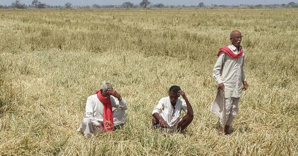 Behind the farmer unrest in Haryana there is a history of instability in crop prices