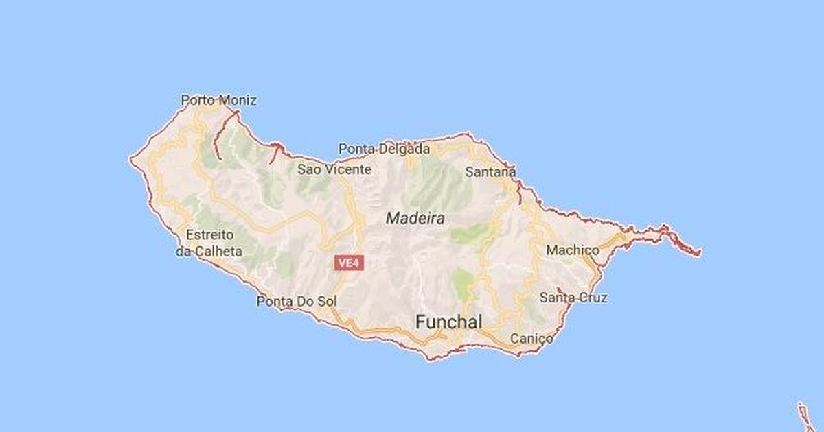 11 killed by falling tree at Portugal religious festival