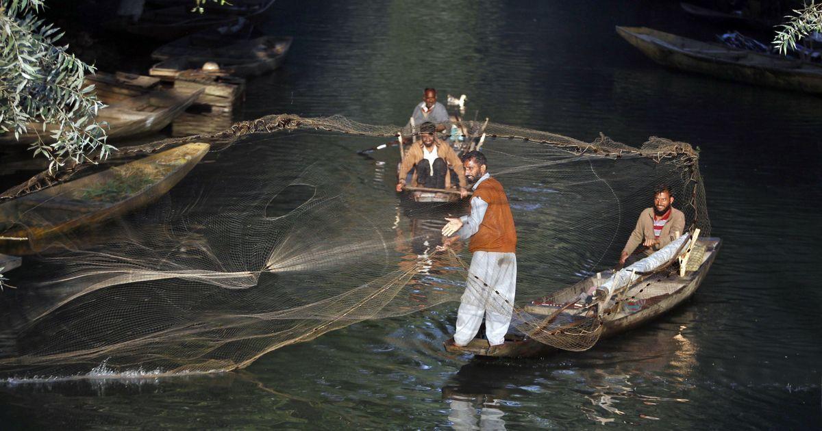 As pollution, encroachment hurt Jammu and Kashmir's water bodies, livelihoods suffer