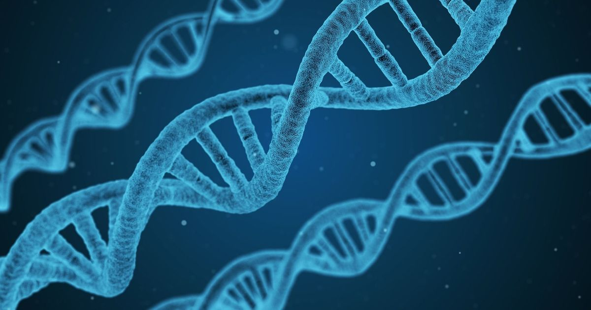 Why we should be wary of epigenetics, the science that reveals our 'true' age