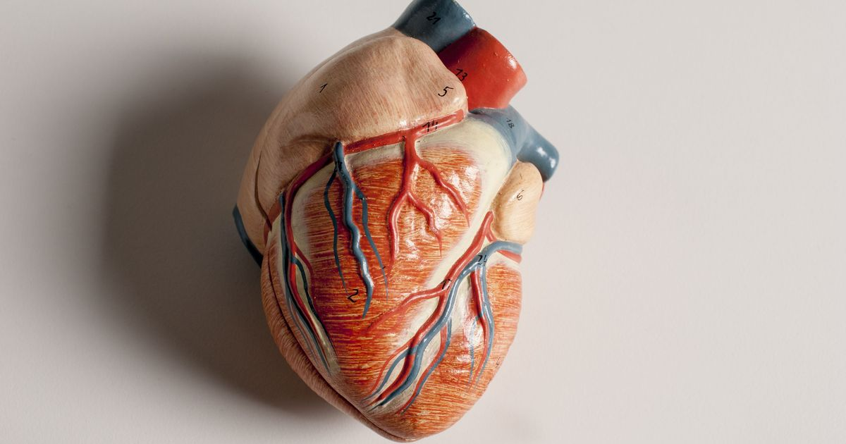 Lab notes: Scientists identify a gene that puts Indians at higher risk of heart disease