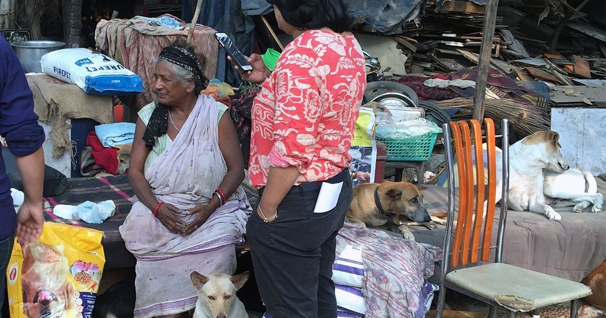 This old woman in Delhi hasn't given up on her 400 strays, even after the civic body razed her home