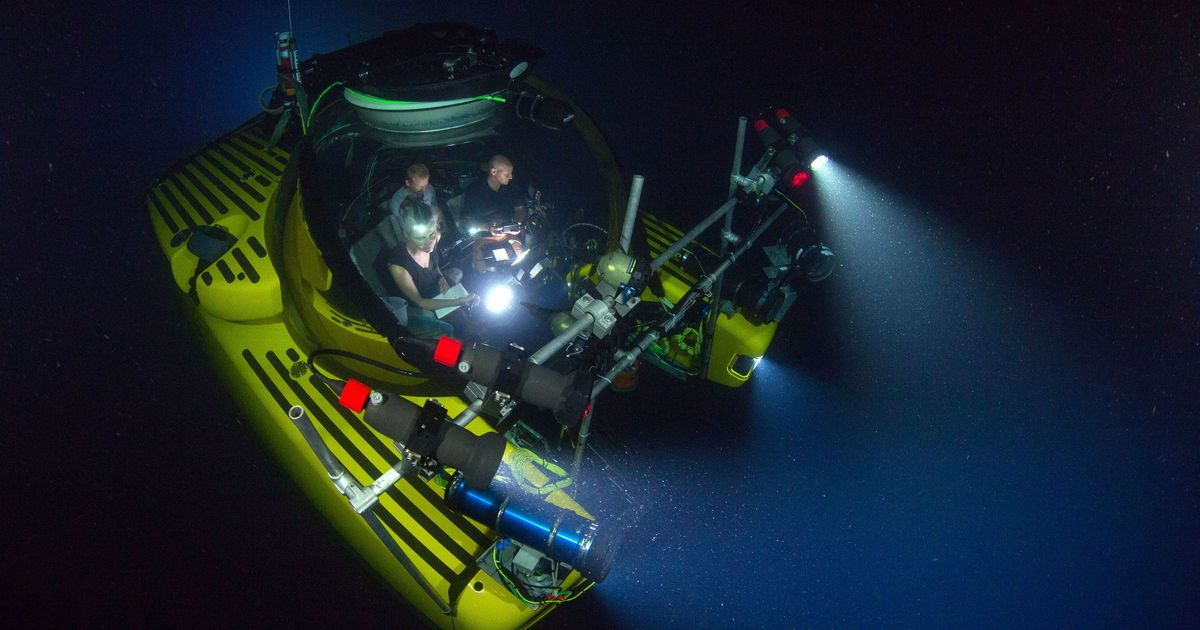 I explored the Antarctic deep seas for a BBC series – and it was like going back 350 million years