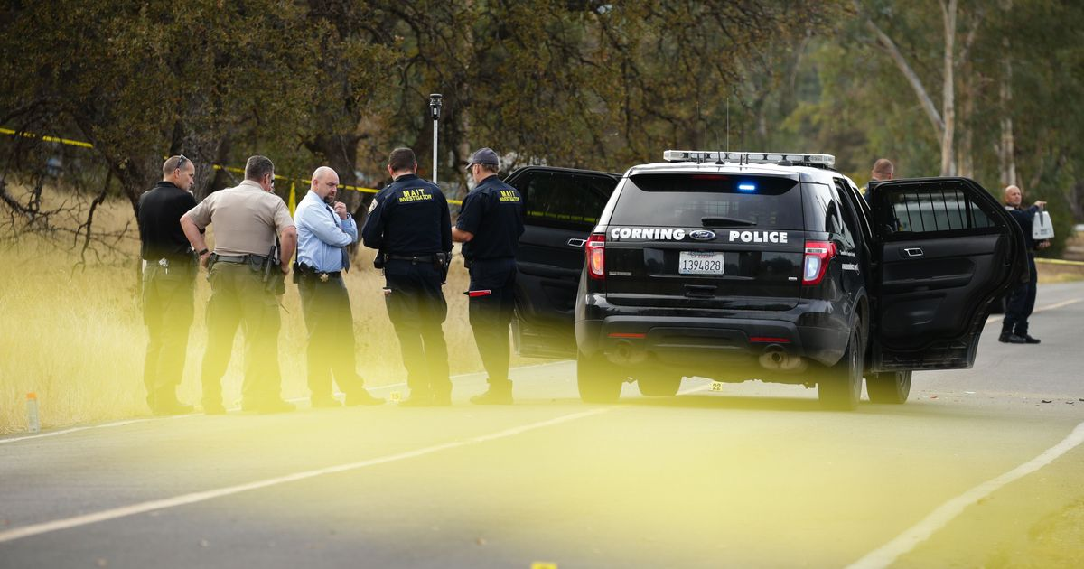 California: Four killed, 10 injured after gunman targets elementary school