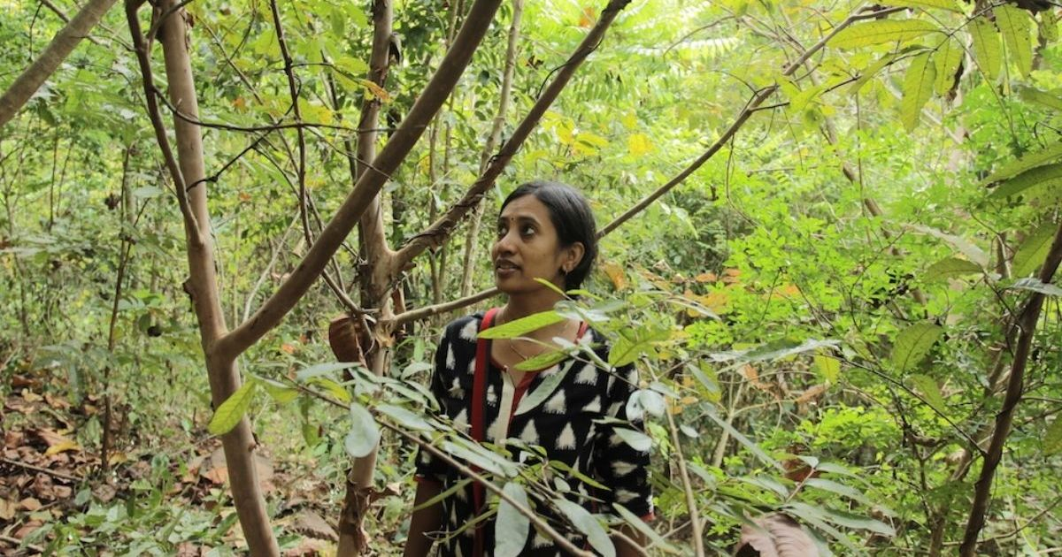 What Kerala can learn from a couple who turned their eight-acre Wayanad property into a forest