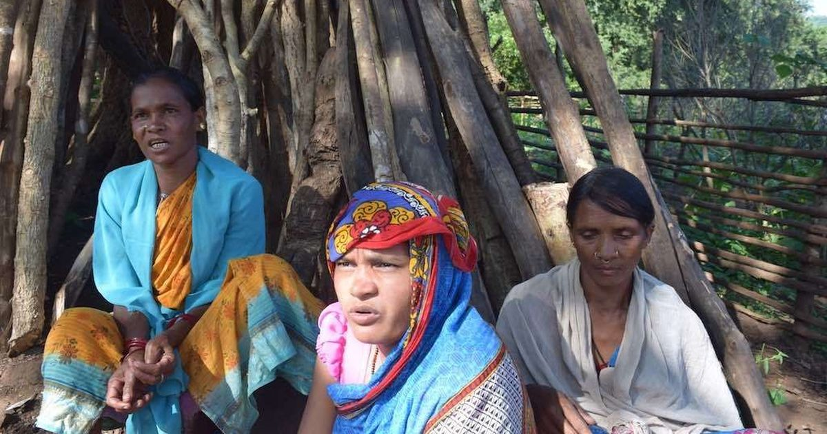 'It's our god, our mother': For Odisha's tribes, preserving forests is key to a sustainable future