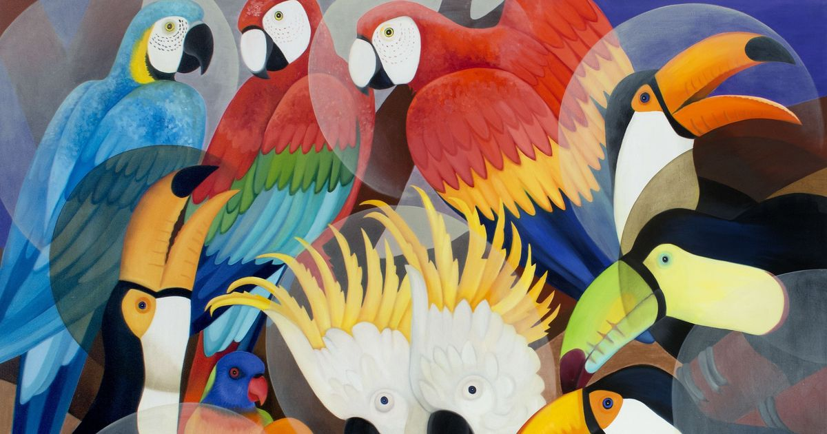 A Sri Lankan artist's colourful paintings record nature's beauty and imminent decline