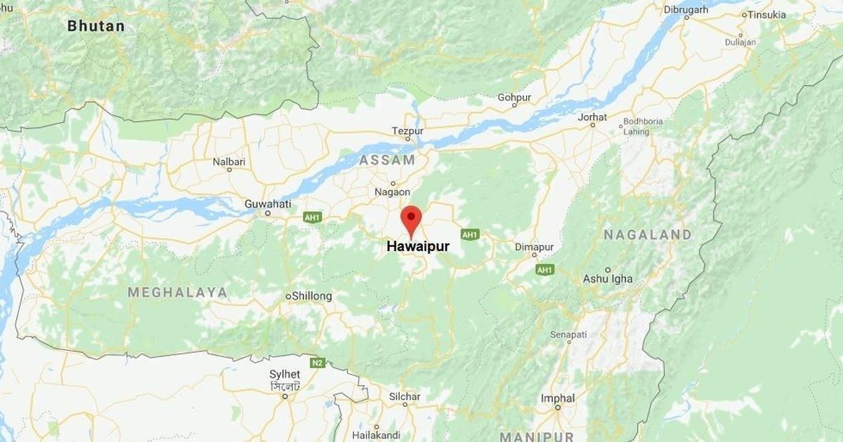 Assam: Five elephants run over and killed by train