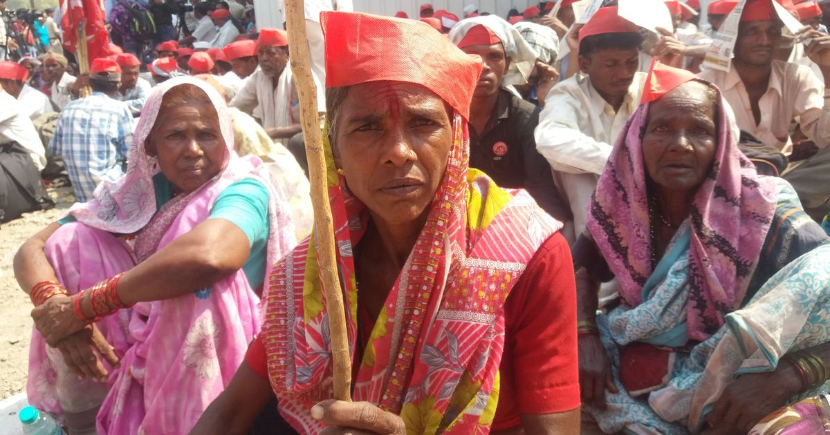 Stories from the Long March: Adivasi farmers explain why they walked 180 km for forest land rights
