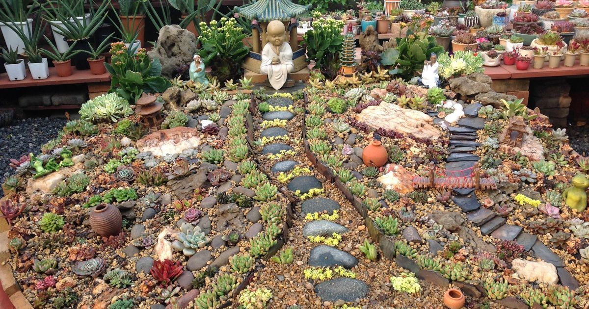 Small Wonders: Miniature Gardens Are The Creative Antidote To Indiau0027s  Concrete Jungles