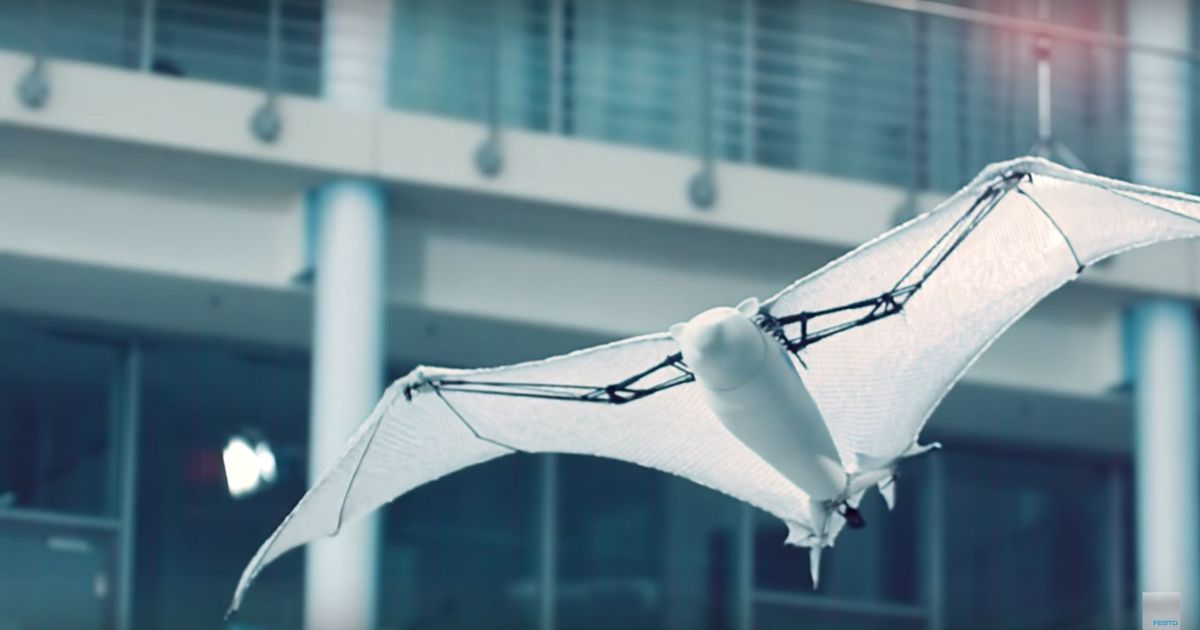 Image of: Wild Animals Videos Bionic Insects And Animals Made By This Robotics Firm Marvellously Resemble The Real Ones Scrollin Videos Robotic Insects And Animals Made By Festo Marvellously
