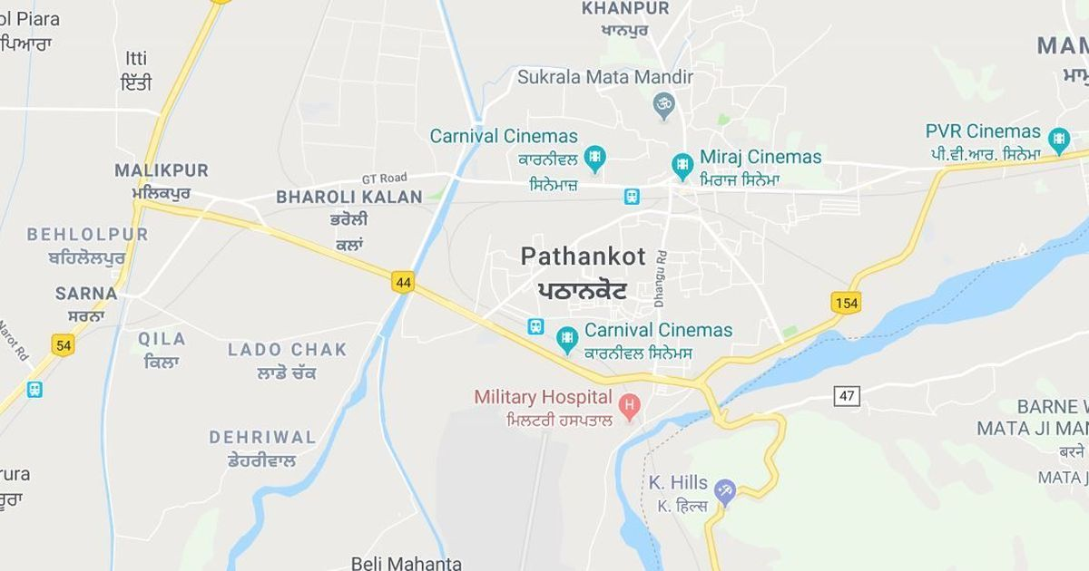 Pathankot on high alert after resident sees two people carrying weapons: Reports